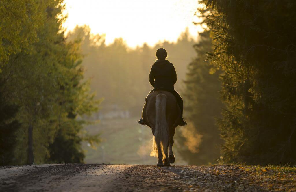 country and equestrian property search woman riding horse into the distance